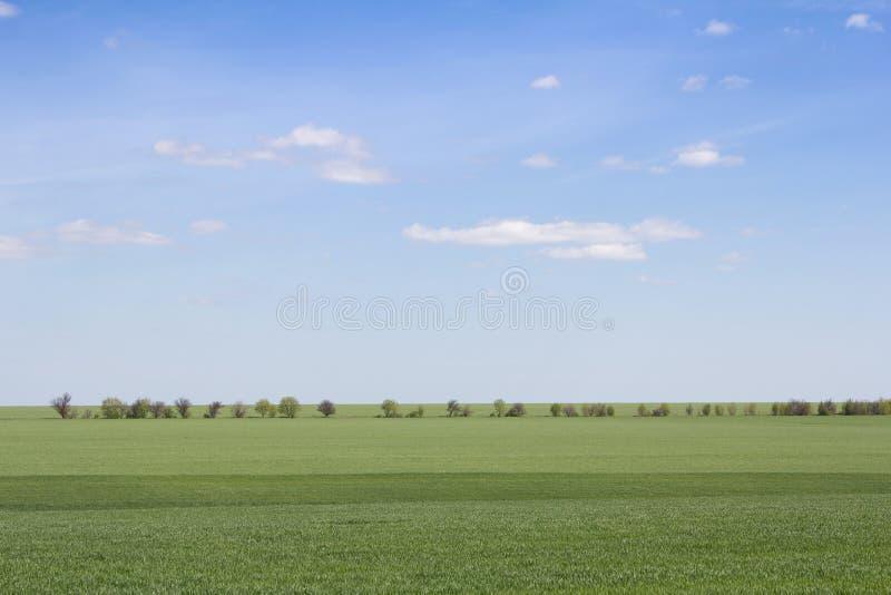 Download Groen Gebied En Blauwe Hemel Met Lichte Wolken Stock Foto - Afbeelding bestaande uit land, blooming: 54083504
