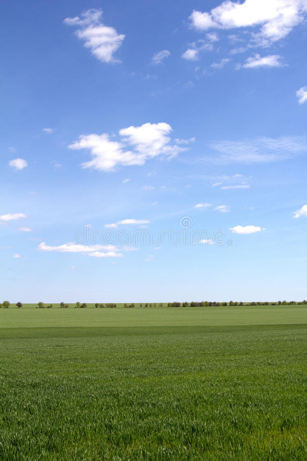 Download Groen Gebied En Blauwe Hemel Met Lichte Wolken Stock Foto - Afbeelding bestaande uit bewolkt, cloudscape: 54083592