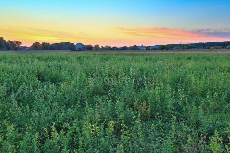 Groen gebied en dorp op de horizon royalty-vrije stock afbeelding
