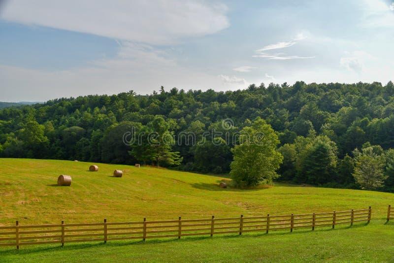 Groen gebied met hooibalen stock afbeeldingen