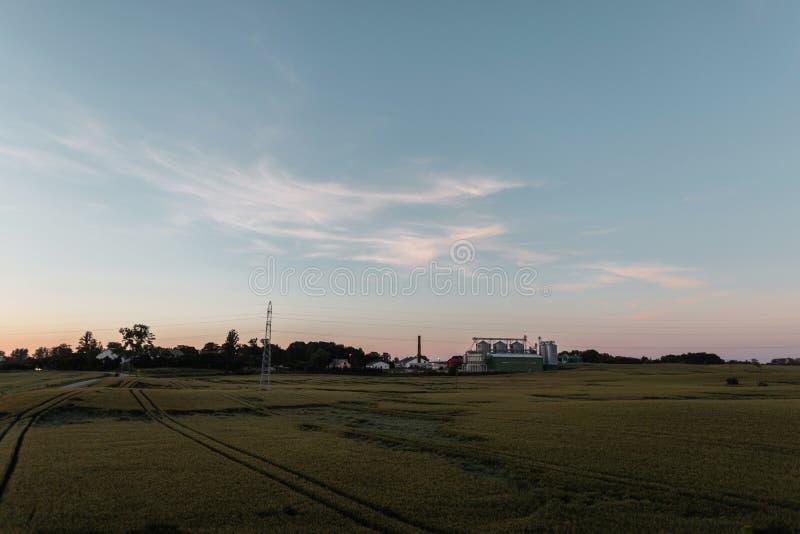 Groen gebied met landbouwbedrijf op een blauwe hemel als achtergrond en een roze de zomerzonsondergang Rust in het dorp Landschap royalty-vrije stock fotografie