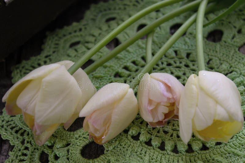 Groen gehaakt servet, tulpen royalty-vrije stock afbeeldingen