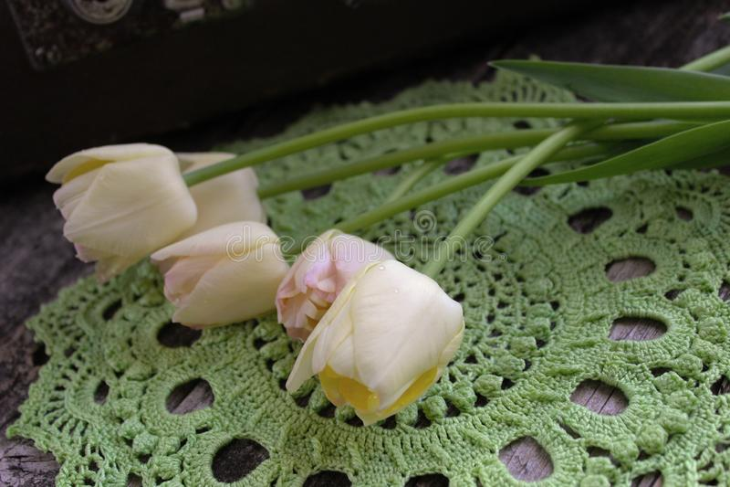 Groen gehaakt servet, tulpen stock afbeelding