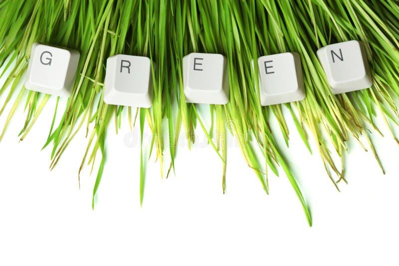 Groen geschreven in toetsenbordsleutels royalty-vrije stock afbeeldingen