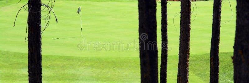 Groen golf royalty-vrije stock afbeeldingen