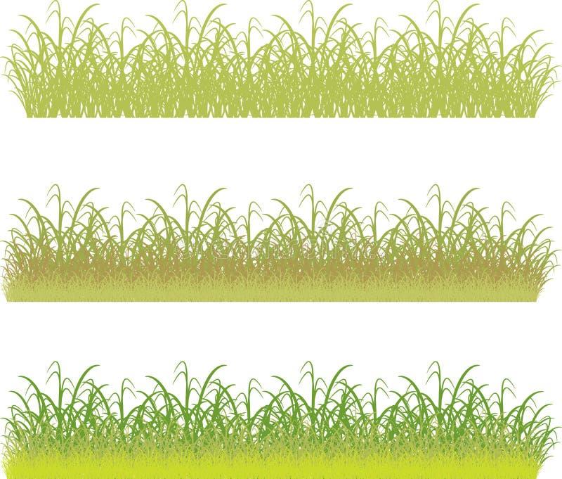 Download Groen gras stock illustratie. Illustratie bestaande uit schoonheid - 29513607