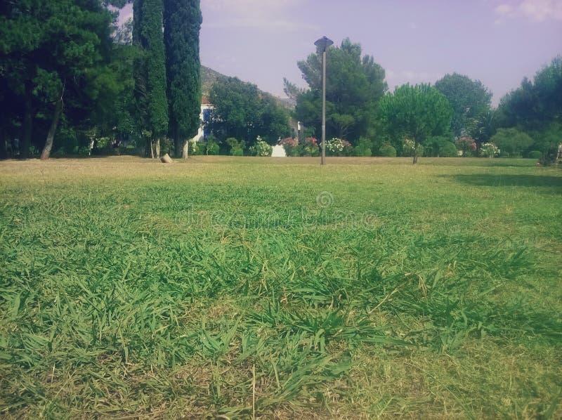Groen gras, bomen, hemel en moutains Tijd te ontspannen Vrede Perfecte Aard stock foto