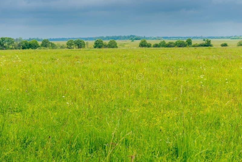 groen gras in de de lentegebied en zware regenwolken royalty-vrije stock afbeelding