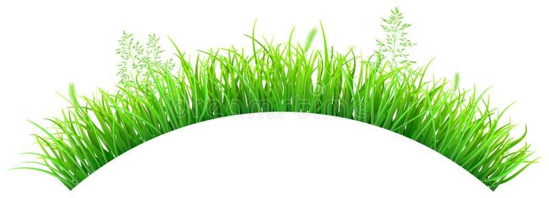 Groen gras in de vorm van een boog vector illustratie