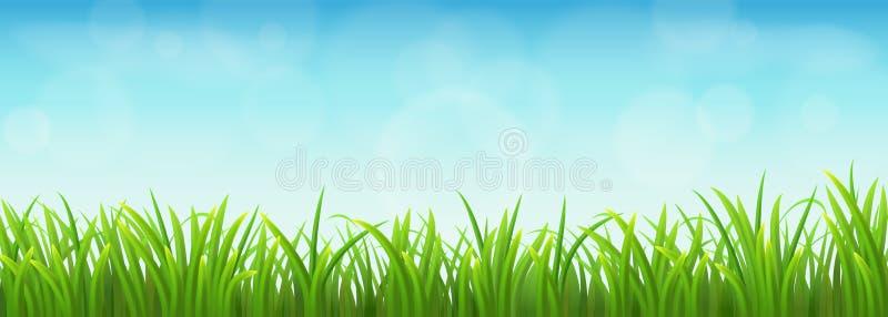 Groen gras en blauwe hemel royalty-vrije illustratie