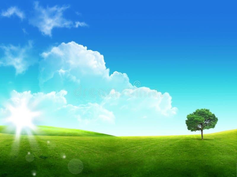 groen gras en blauwe hemel met wolken en boom stock afbeeldingen