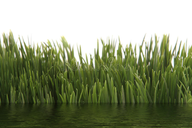 Groen gras met watereffect royalty-vrije stock afbeelding