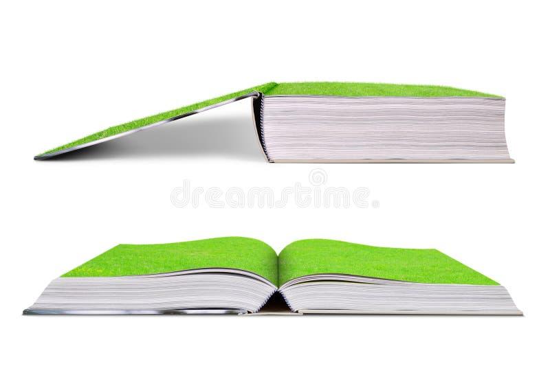 Groen gras op een open boek royalty-vrije stock afbeeldingen