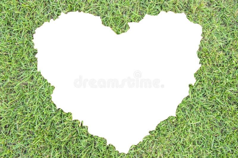 Groen gras van hart royalty-vrije stock foto's