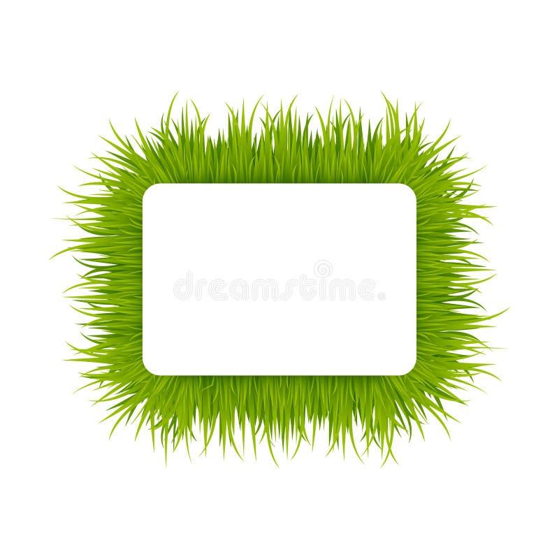 Groen gras vierkant kader royalty-vrije illustratie