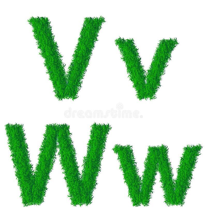 Groen grasalfabet vector illustratie