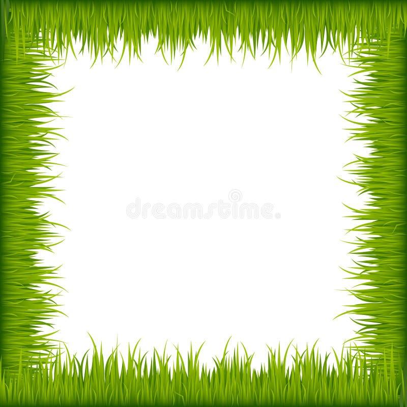 Groen grasframe stock illustratie