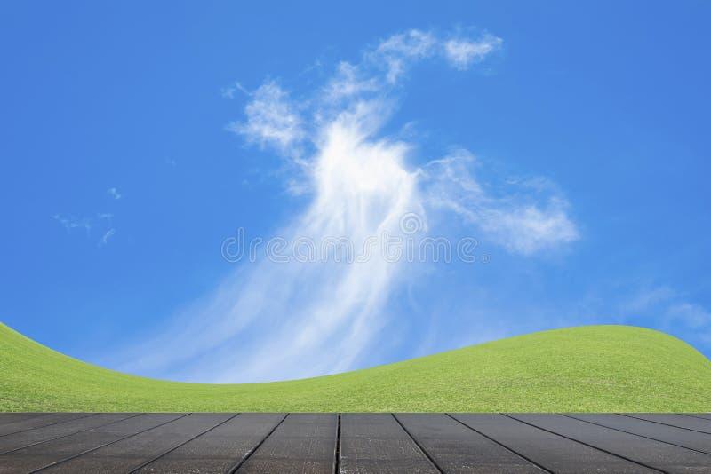 Groen grasgebied en heldere blauwe hemel stock afbeeldingen