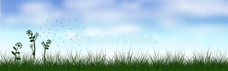 Groen graslandschap onder de blauwe hemel royalty-vrije stock fotografie