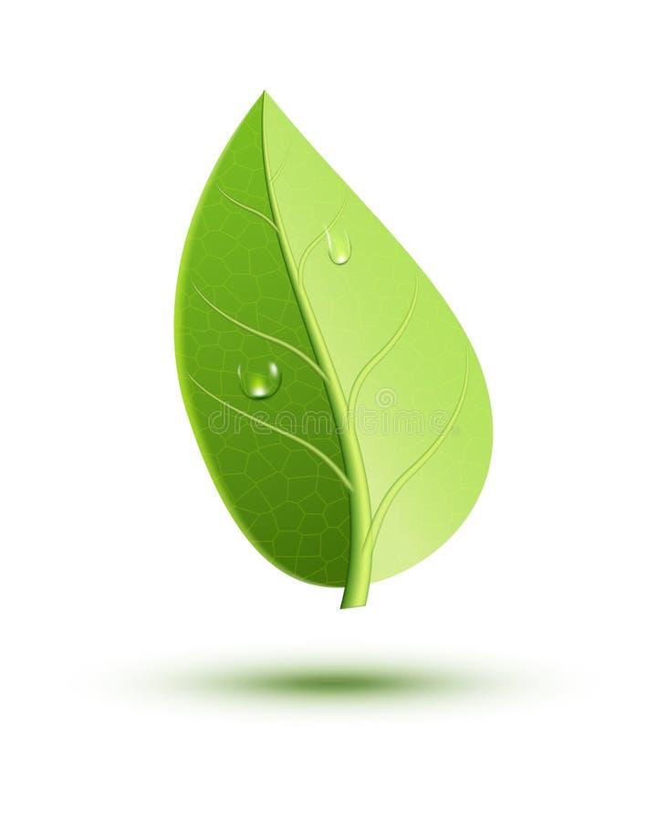 Groen het pictogramblad van het ecologieconcept Groen de aard organisch element van de bladinstallatie De illustratie van het de  vector illustratie