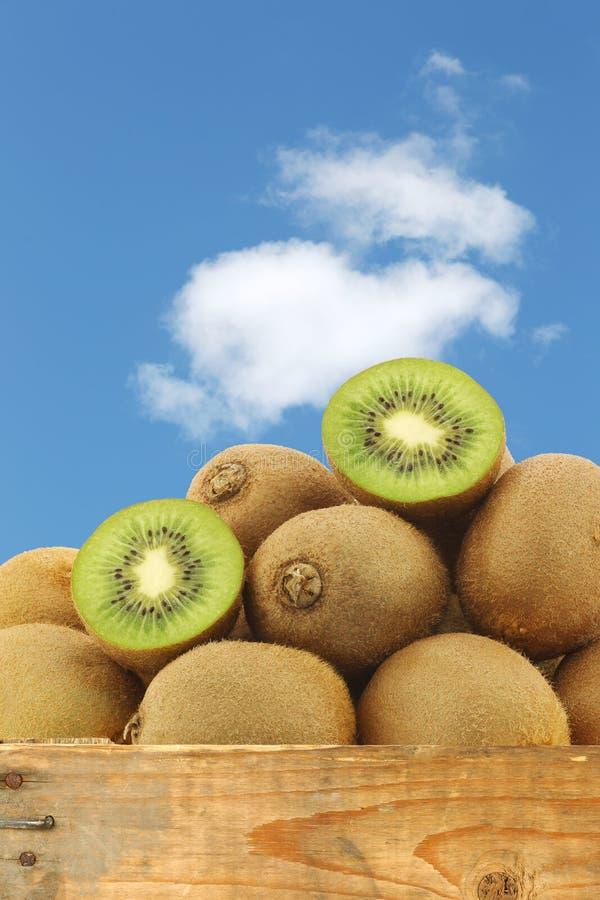 Groen kiwifruit en een besnoeiing  royalty-vrije stock fotografie