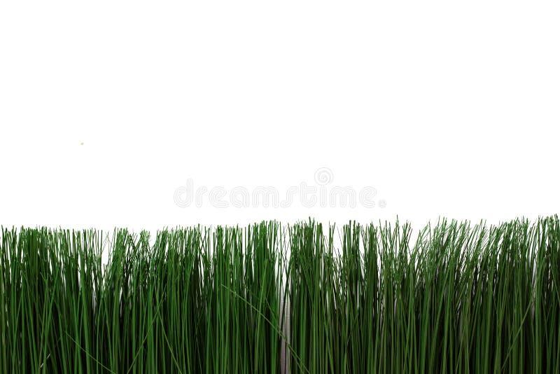 Groen kunstmatig gras op een witte achtergrond Dun gras in een heldere pot stock afbeelding