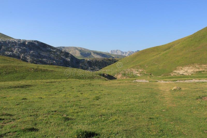 Groen land stock afbeeldingen