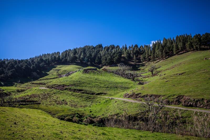 Download Groen landschap stock foto. Afbeelding bestaande uit scène - 39107858