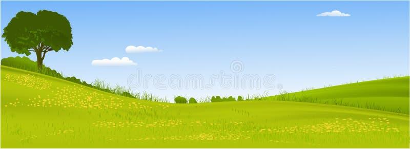 Groen landschap met boom vector illustratie