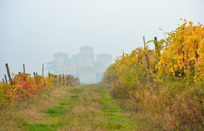 Groen landschap op heuvels rond Parma en grasgebied dichtbij Torrechiara-kasteel onder mist, Italië stock afbeeldingen