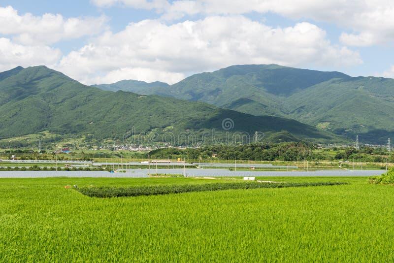 Download Groen Landschap In Zuid-Korea Stock Afbeelding - Afbeelding bestaande uit panorama, korea: 39107287