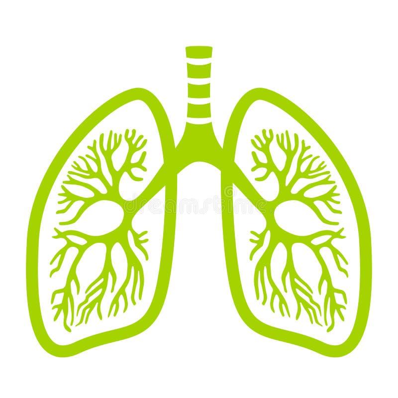 Groen longen vectorpictogram royalty-vrije illustratie
