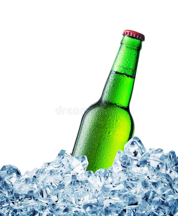 Groen misted over fles bier op ijs stock fotografie