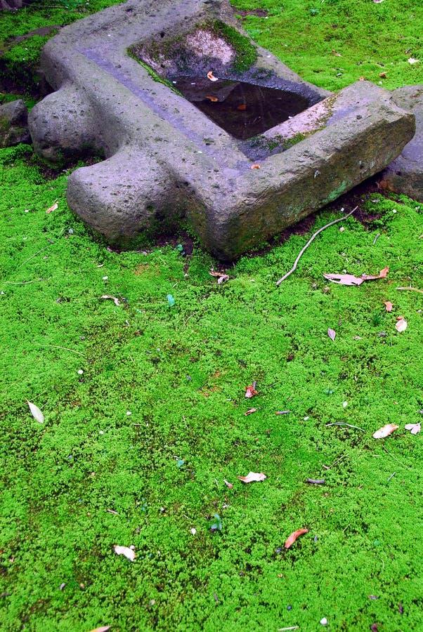 Groen mos en steenbassin stock foto's