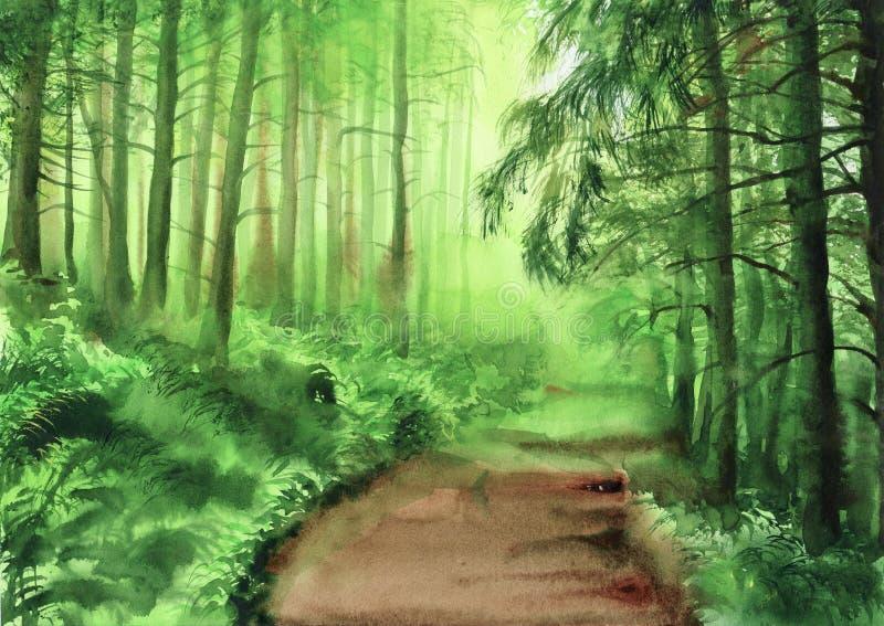Groen nevelig bos royalty-vrije illustratie