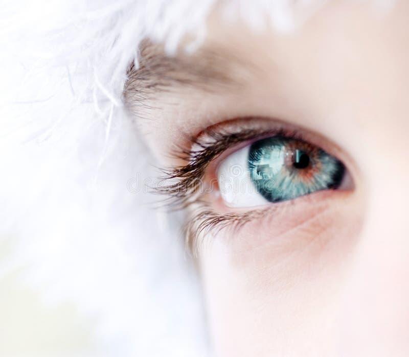 groen oog royalty-vrije stock foto's