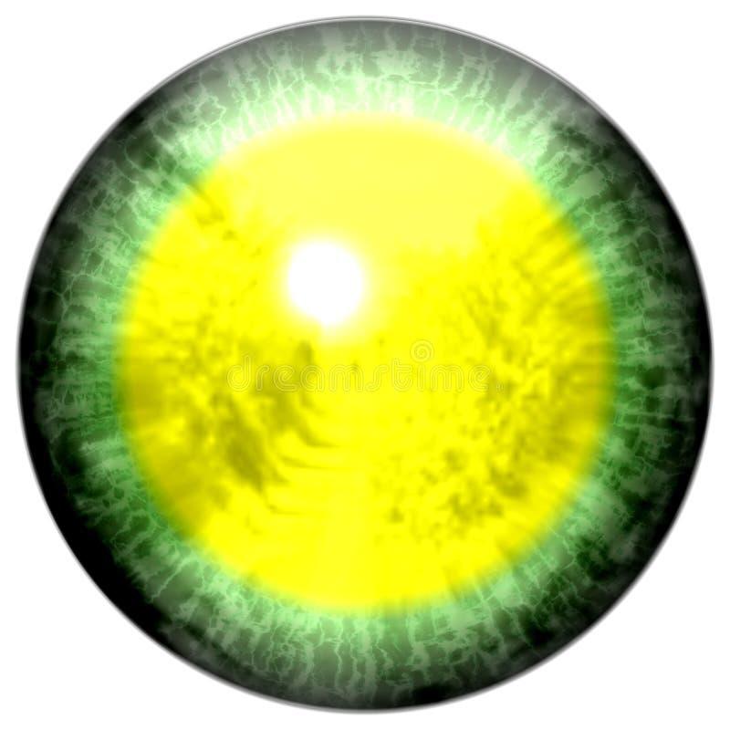 Groen oog met open leerling en heldere gele retina op achtergrond Donkere kleurrijke iris rond leerling, geïsoleerd oog vector illustratie
