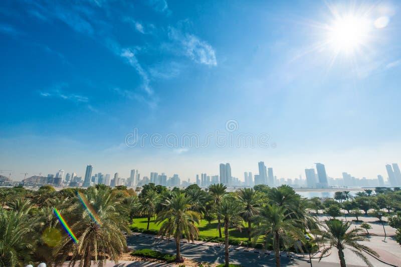 Groen park met palmen op de achtergrond van wolkenkrabbers royalty-vrije stock afbeelding