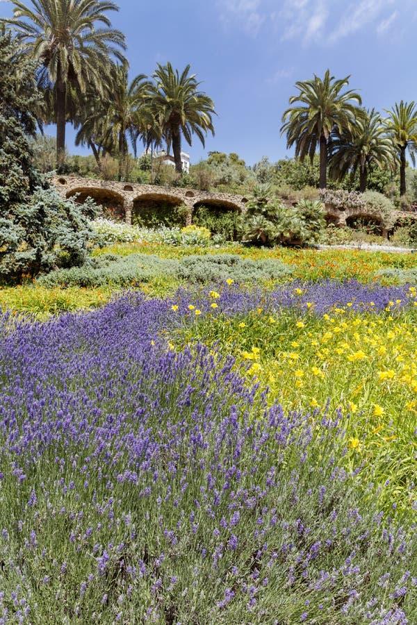 Groen park in Spanje royalty-vrije stock afbeeldingen