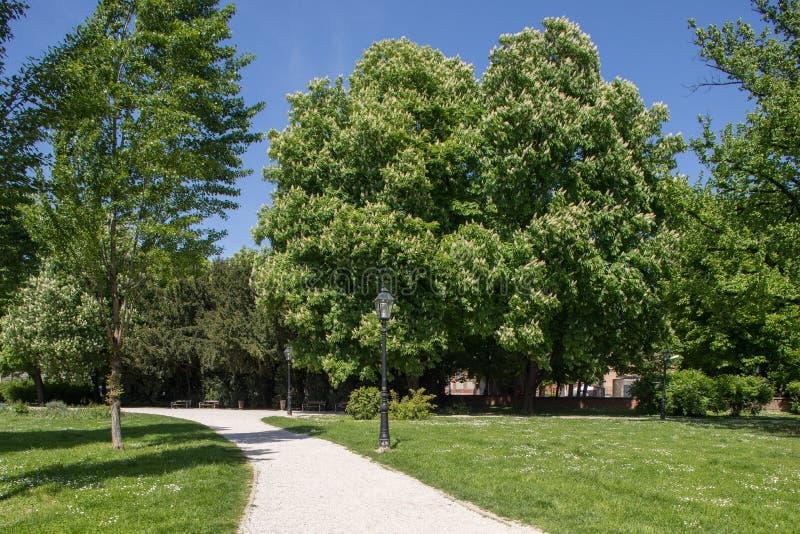 Groen park in Zagreb, Kroati? stock afbeeldingen
