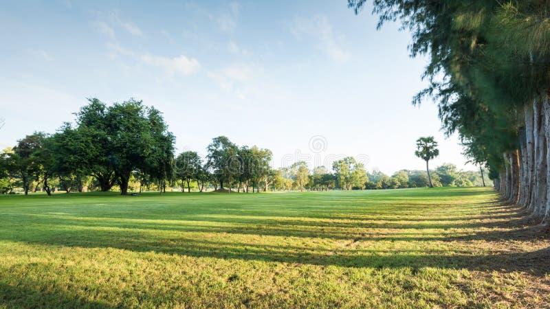 Groen parklandschap in de ochtend met blauwe hemel, Mooie groen stock afbeelding