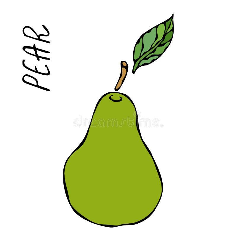 Groen Peer en Blad Het Dieet van de vers Fruitvoeding De herfst of Dalings Plantaardige Oogstinzameling Realistische Hand Getrokk stock illustratie
