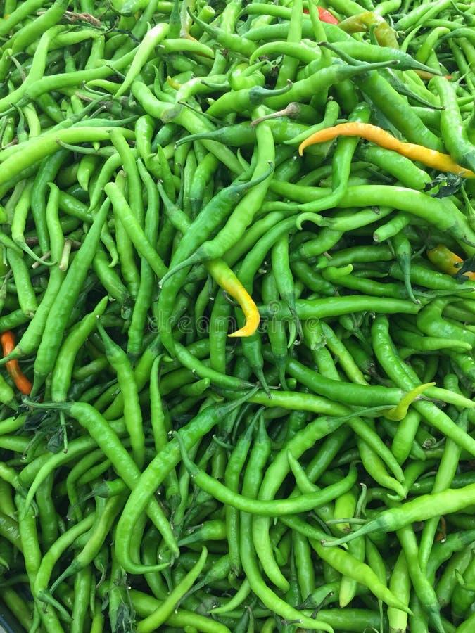 Groen Spaanse pepersbeeld royalty-vrije stock afbeelding