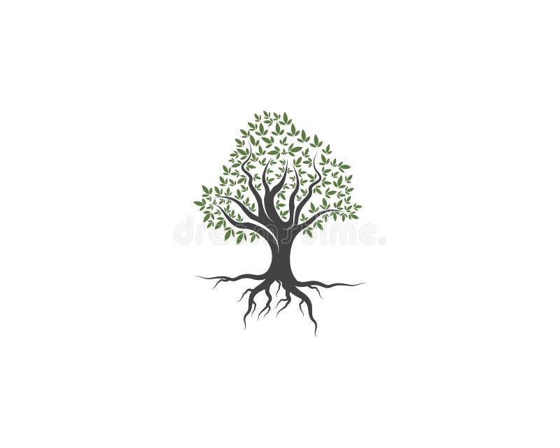 Groen van van de het embleemecologie van het boomblad de vector van de het elementenaard vector illustratie