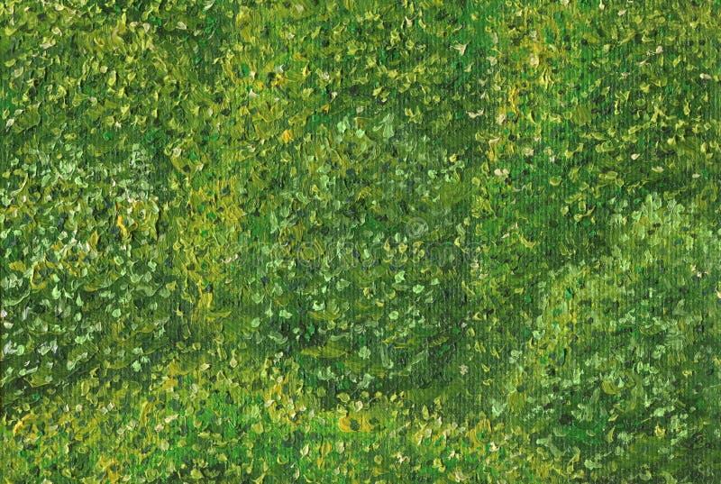 Groen vergankelijk bos op een zonnige de zomerdag royalty-vrije illustratie