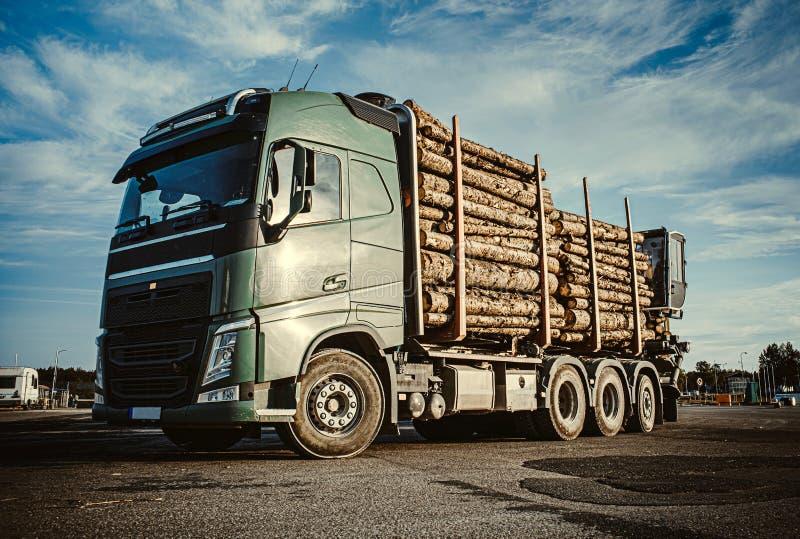 Groen vrachtwagen dragend hout voor pulp aan het vrachtschip in de haven Jonge volwassenen Sluit omhoog De ruimte van het exempla stock afbeeldingen