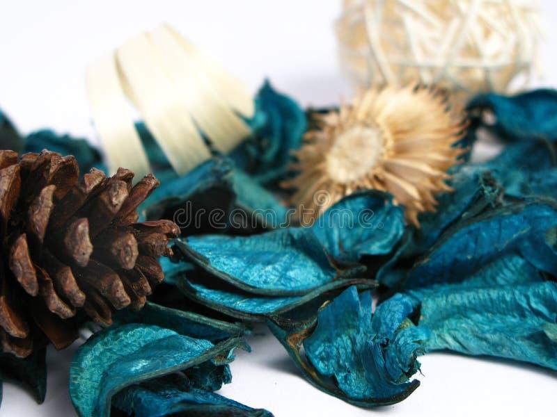 Groen Welriekend mengsel van gedroogde bloemen en kruiden royalty-vrije stock foto