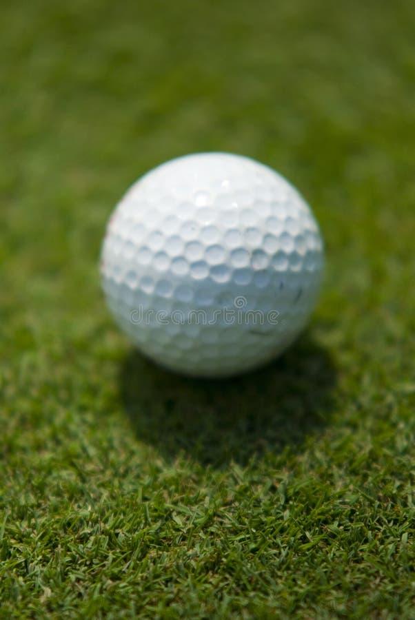 Groen zetten van het golf stock fotografie