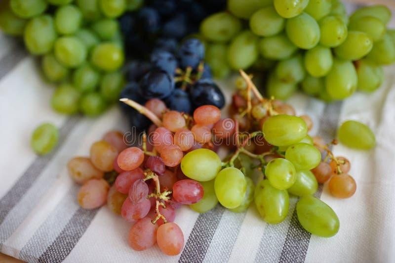 Groenachtig blauwe druiven stock afbeeldingen