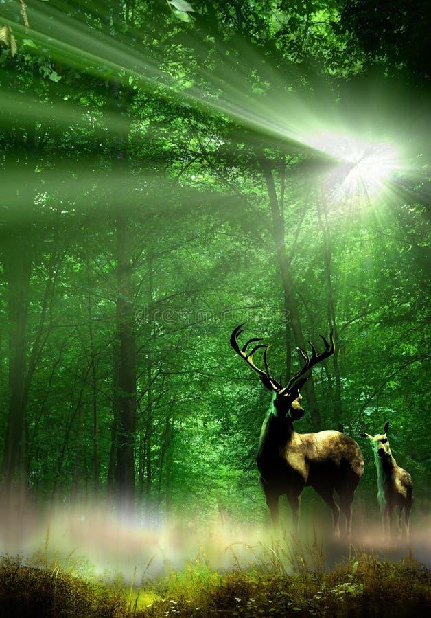 Groene aard en het wild vector illustratie